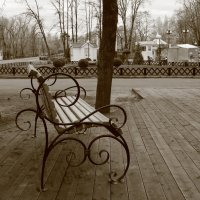 Одинокая  Лавочка. :: Eva Tisse