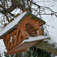 Домик для птичек. :: Михаил Столяров