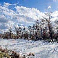 Немного снежно :: Сергей Тарабара