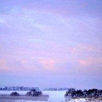 Декабрьский туман. :: Михаил Столяров