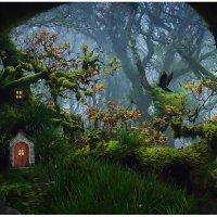 Сказочный лес :: Sergii VIdov