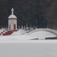 Михалково. Декабрь :: Дмитрий Никитин