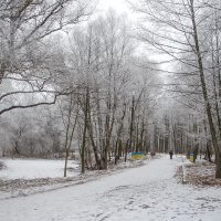 Зима в городском саду :: Сергей Тарабара
