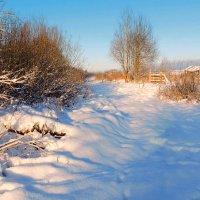 А просто зима :: Павлова Татьяна Павлова
