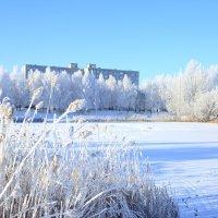 Пруд зимой :: Александр Толстых