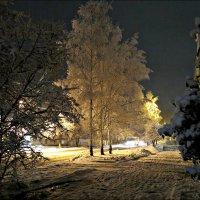 Декабрьский вечер :: Leonid Rutov