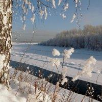 Зима рассыпала пушистый снег :: Нина северянка