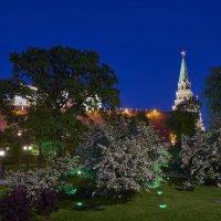 Москва. Александровский сад под стенами Кремля майским вечером :: Минихан Сафин
