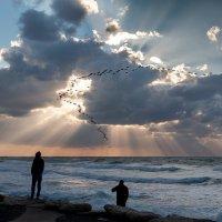 Снова птицы в стаи собираются, Ждёт их за моря дорога дальняя... :: Nadin