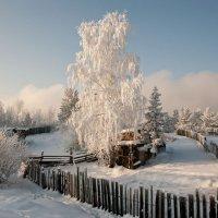 Зимняя сказка... :: Сергей Герасимов