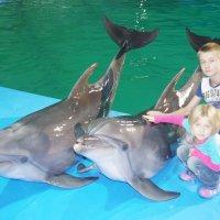 я с дельфином :: София
