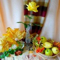 Одарила осень золотая... :: Тамара (st.tamara)