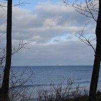 Балтийское море в погожий декабрьский день :: Маргарита Батырева