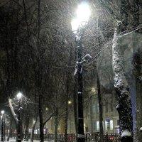 Пришла зима :: Александр
