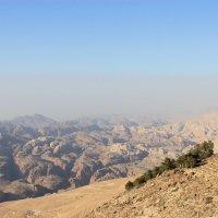 Горы Иордании :: Юлия Грозенко