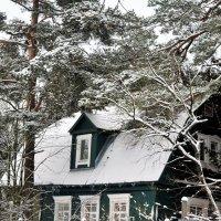 И снова снег  укрыл неслышно, пока все спали, этот мир. :: Татьяна Помогалова