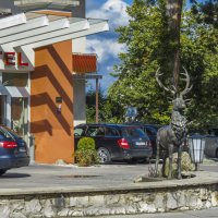 Олень у входа в гостиницу :: Сергей Цветков