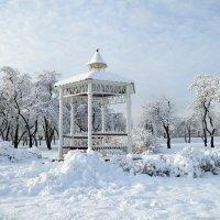 Зимнее утро в Лошицком парке :: Галина Сергеевна