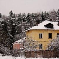 Поселок :: Виктория Левина