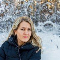 В зимнем лесу :: Владимир Деньгуб
