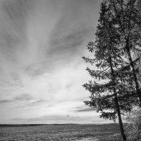 Про север :: Денис Сидельников