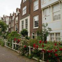 Прогулки по Амстердаму.... :: Алёна Савина