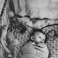 Новый гражданин :: A. SMIRNOV