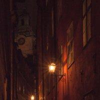 В обнимку с вечером и ветром... :: liudmila drake