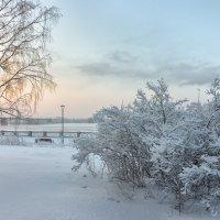 цвета морозного утра :: cfysx