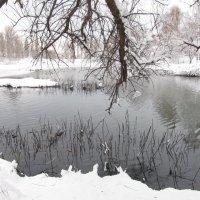 декабрь :: tgtyjdrf