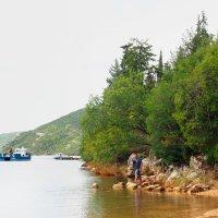 На берегу Лимского канала. Хорватия. :: Николай Ярёменко