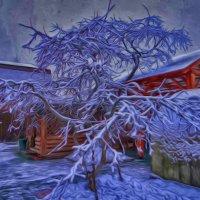 Зима 3 :: Алексей Цветков