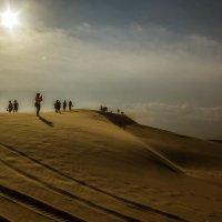 Вечер в песках :: Сергей Дабаев