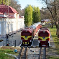 Детская железная дорога :: © ГраВИ