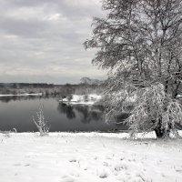 с видом на реку :: оксана