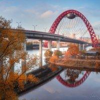 Твоих мостов... :: Валерий Шейкин