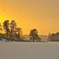 снег с чистого небо :: Елена