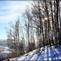 Зима. :: Александр Шимохин