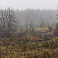 """""""зима"""" :: Геннадий Свистов"""