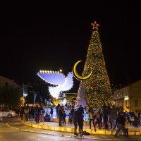 Новогодняя елка в Хйфе. Израиль :: Юрий Тойбин