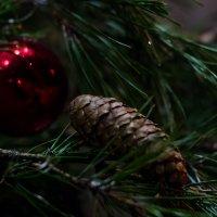 Перед Рождественской ночью :: Микто (Mikto) Михаил Носков