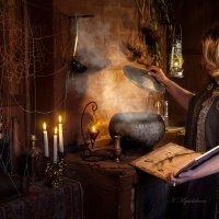 Приготовление волшебного зелья. :: Наталья Мячикова