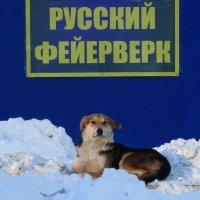 Отдых по-русски :: Валерий Чепкасов