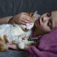 Детский сон :: Анна Меркулова