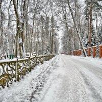 В  МОНИНО зима ! ! ! :: Сергей