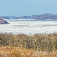 Бухта Шошина, остров Русский, Владивосток :: Эдуард Куклин