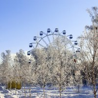 зимний парк :: раиса Орловская