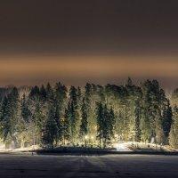 ночная съемка :: Наталия Горюнова