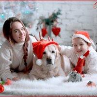 с новым Годом -годом Собаки)))) :: Мила Гусева