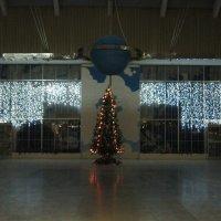 Новогодние огни :: Дмитрий Никитин